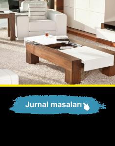 jurnal-masalari