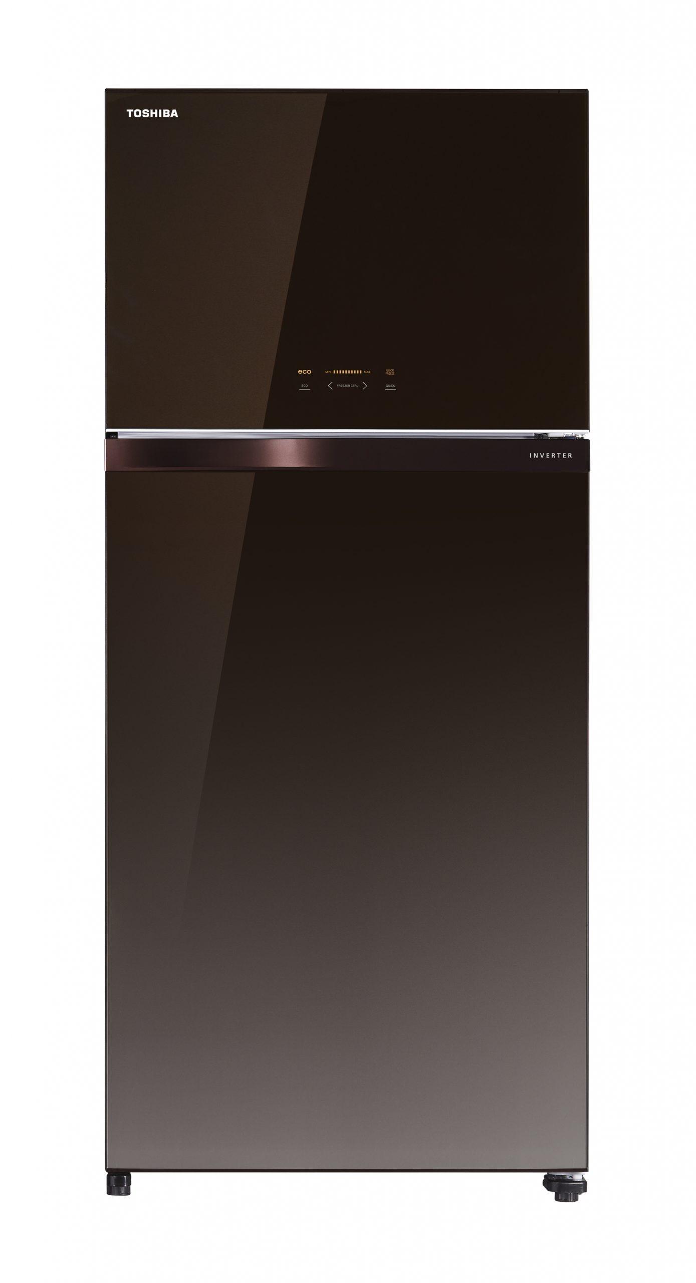 Soyuducu Toshiba GR-AG820U-C(PGB)