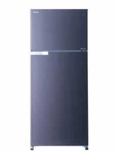 Soyuducu Toshiba GR-H655UBZ-C(DS)